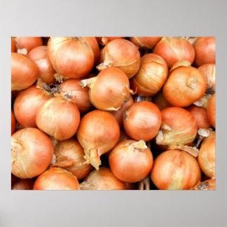 Cebollas Póster