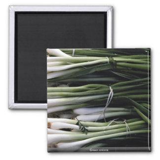 Cebollas verdes imán para frigorifico