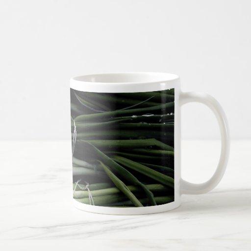 Cebollas verdes taza de café