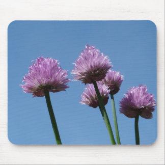 Cebolletas de la cebolla púrpura de la hierba del  alfombrilla de raton