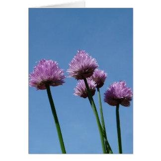 Cebolletas de la cebolla púrpura de la hierba del  tarjeta de felicitación