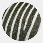 Cebra 2 pegatina redonda