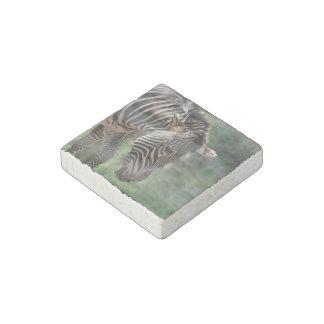 Cebra adorable imán de piedra