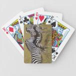 cebra barajas de cartas
