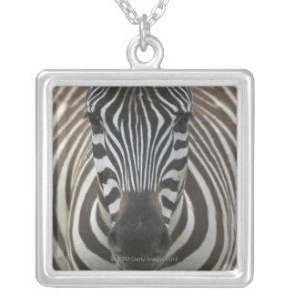 Cebra común (quagga) del Equus, ascendente cercano Colgante Personalizado