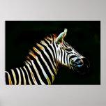Cebra con las rayas blancos y negros en África Poster