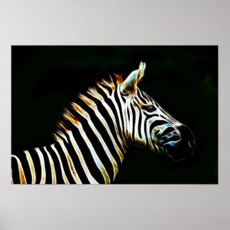 Cebra con las rayas blancos y negros en África Póster