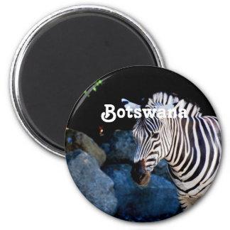 Cebra de Botswana Imán Redondo 5 Cm