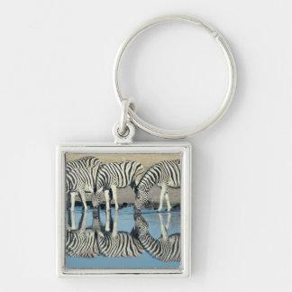 Cebra de Burchells (burchelli del Equus) Llaveros Personalizados