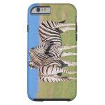 Cebra de dos llanos (quagga del Equus) en costero Funda De iPhone 6 Tough