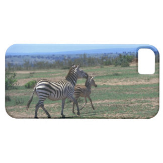 Cebra de Grant iPhone 5 Case-Mate Carcasas