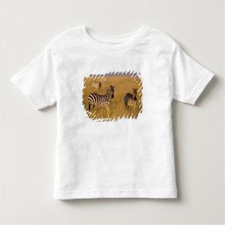 Cebra de los llanos (quagga del Equus) en la Playera De Bebé