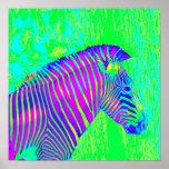 cebra de neón - retro del verde, azul y púrpura poster