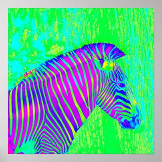cebra de neón - retro del verde, azul y púrpura póster