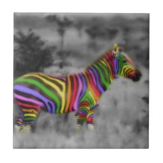 Cebra del arco iris azulejo cuadrado pequeño
