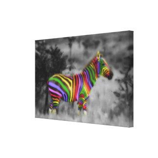 Cebra del arco iris impresión en lienzo
