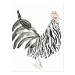 Cebra del gallo del safari tarjeta postal