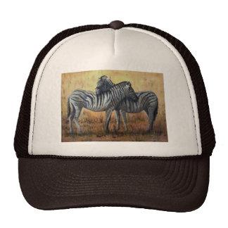 Cebra del gorra