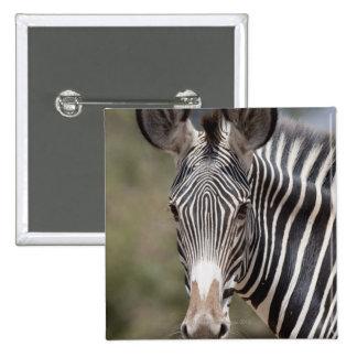 Cebra, Kenia, África Pin Cuadrado
