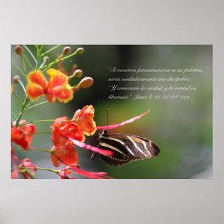 Cebra Longwing del mariposa de la estafa de Juan 8 Póster