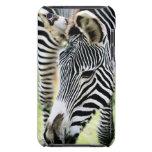 Cebra, primer, foco selectivo iPod touch Case-Mate protector