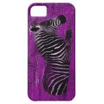 Cebra púrpura iPhone 5 cárcasa