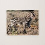 Cebra que corre en África en safari en el arbusto Puzzle Con Fotos