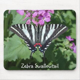 Cebra Swallowtail en la flor Tapetes De Ratón