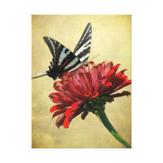 Cebra Swallowtail en lona Impresión En Tela
