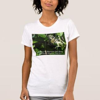 Cebra Swallowtail en madreselva Camiseta