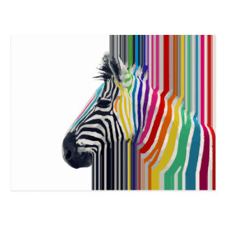 cebra vibrante colorida de moda impresionante de l tarjetas postales