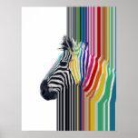 cebra vibrante colorida de moda impresionante de póster
