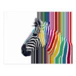 cebra vibrante colorida de moda impresionante de tarjeta postal