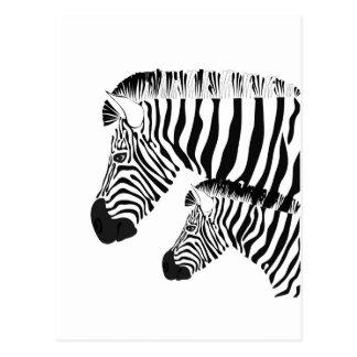 Cebra y bebé tarjetas postales