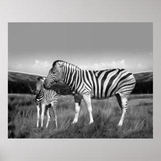Cebra y mamá del bebé posters