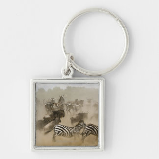 cebras (burchelli del Equus) y wildebeest Llaveros