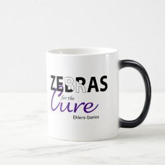 Cebras del EDS para la taza de la curación