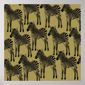 Cebras Posters