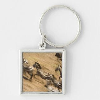 Cebras (quagga del Equus) y wildebeest Llaveros Personalizados