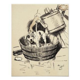 "Cecil Aldin 1902 ""Dog Getting a Bath"" Print Photo Print"