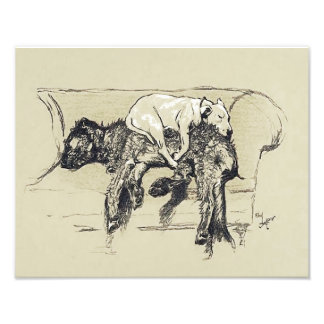 """Cecil Aldin 1902 """"Lazy Dogs Sleeping on Couch"""" Photo Print"""
