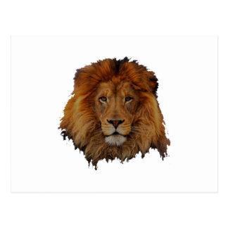 Cecil lion design postcard