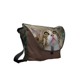 Cecilia #1 bolsas de mensajeria