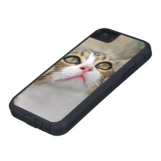 Cecilia #1 iPhone SE/5/5s case