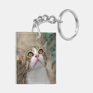 Cecilia #1 square acrylic key chains