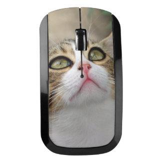 Cecilia #1 wireless mouse