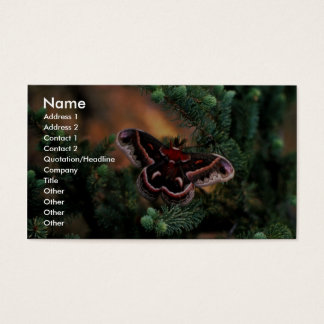 Cecropia moth business card