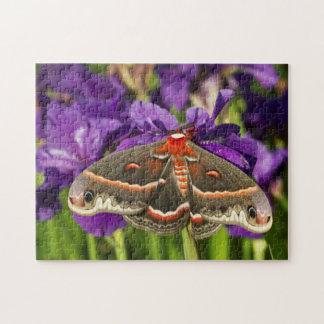 Cecropia Moth in flower garden Jigsaw Puzzle