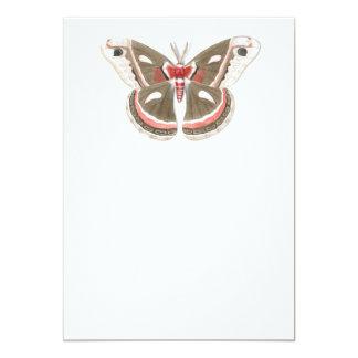 Cecropia Moth Invitation