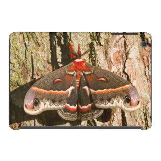 Cecropia Moth on tree trunk iPad Mini Case